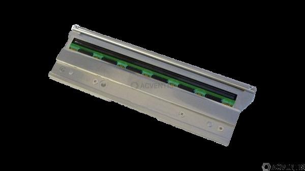 CITIZEN Druckkopf für CL-S521, CLP-621, CL-S621 | JM14705-0