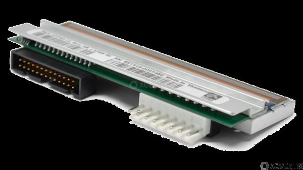 ZEBRA Druckkopf für 110Xi4, 12 Punkte/mm (300dpi) | P1004232